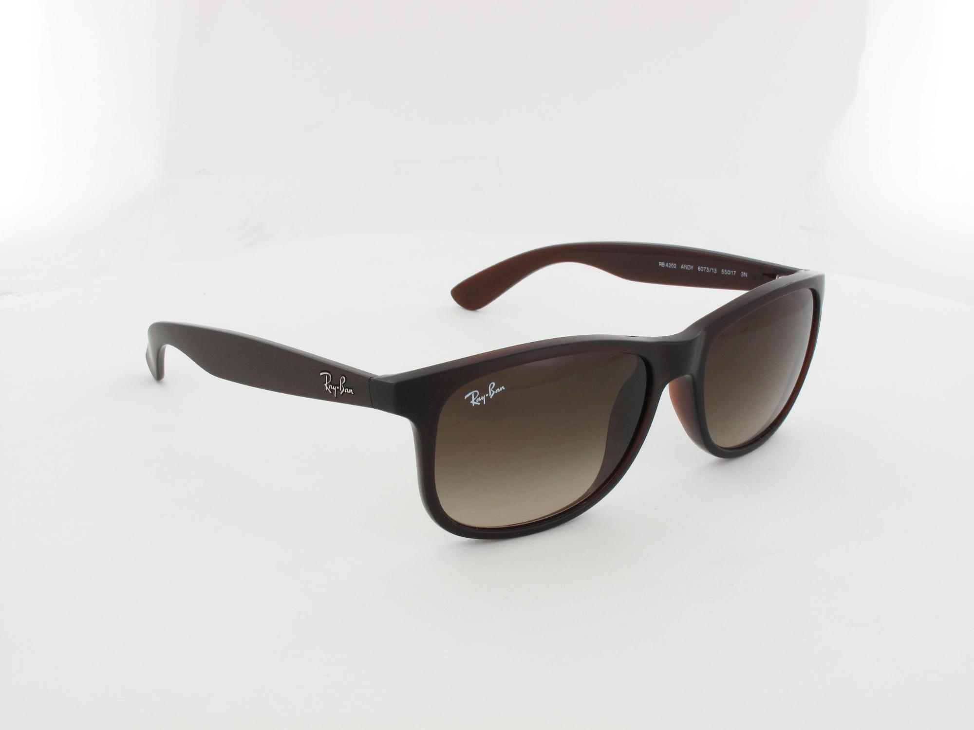 Ray Ban | Andy RB4202 607313 55 | matte brown / brown gradient